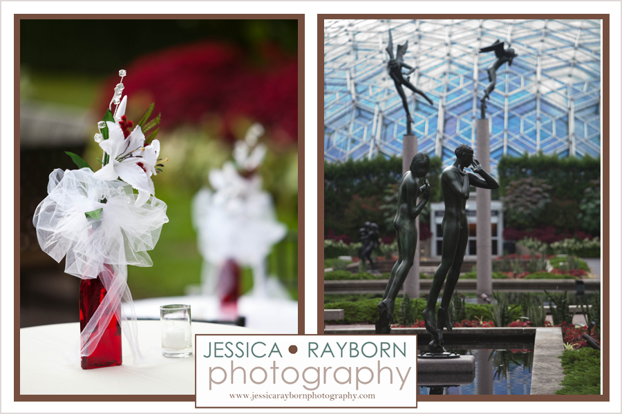 Missouri_Botanical_ Garden_10035